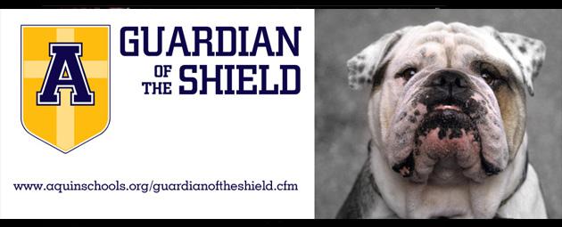 2014 shield